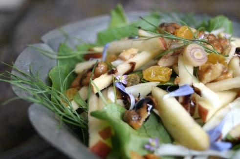 Salad of turnip greens, fennel, apple, lemongrass, walnuts, and raisins