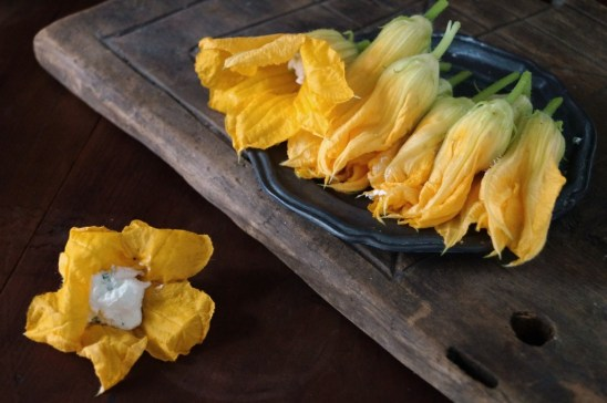 Squash blossoms with goat cheese