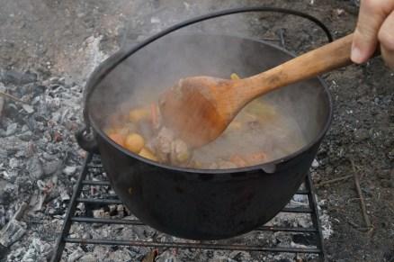 venison stew!