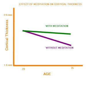 Effect-of-Meditation-on-Brain