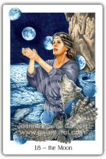 The Moon from The Gaian Tarot by Joanna Powell Colbert