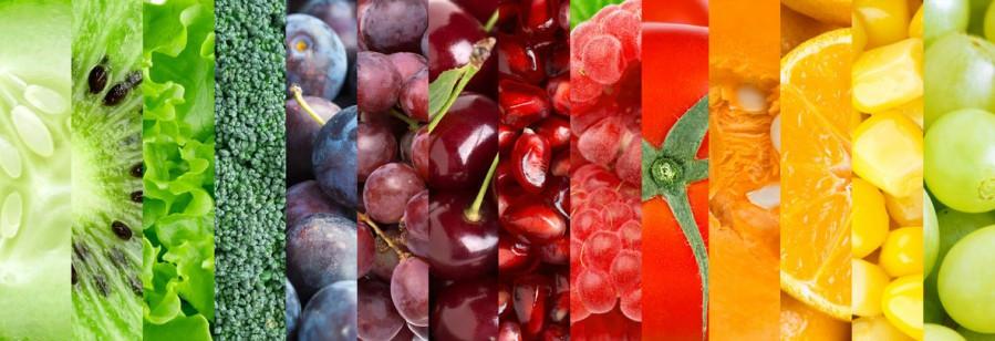integrative functional medicine nutritionist dietitian