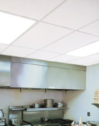 Cleanroom Ceiling Tiles