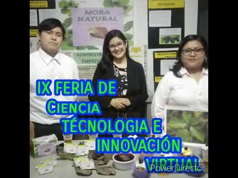 IX FERIA DE CIENCIA, TECNOLOGÍA E INNOVACIÓN TECNOLÓGICA-/I. E. S. T. P JULIO C. TELLO