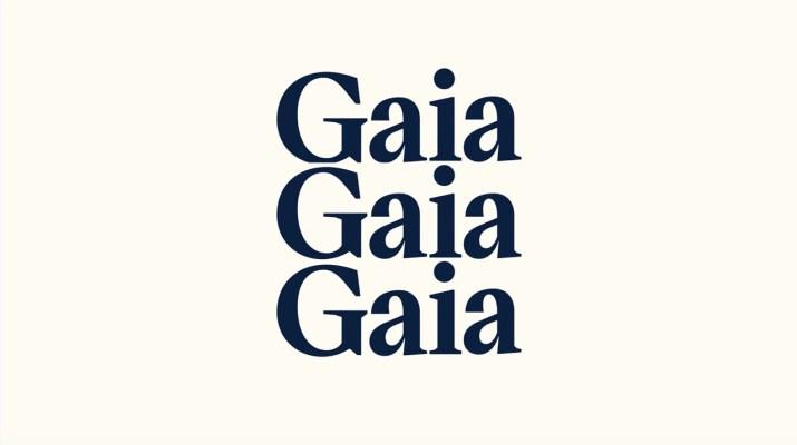 Conheça a Gaia - Inteligência Artificial | Gupy
