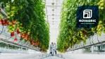 Proyectos Agrícolas Innovadores, Rentables y Sostenibles - NOVAGRIC