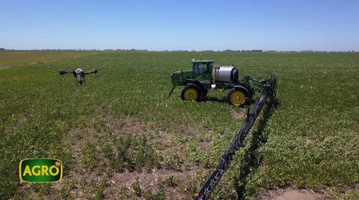 Agrícola Testa: Inteligencia artificial, drones y precisión en cada metro (#915 2021-02-13)