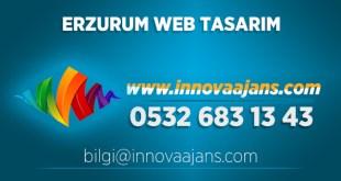 Oltu Web Tasarım