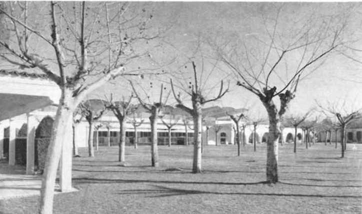 Zarzuela-racehorse-View-of-the-arcades