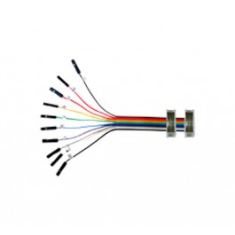 10 pin Split Cable