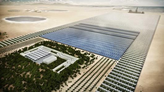 Image: Sahara Forest Project Foundation / Screenergy