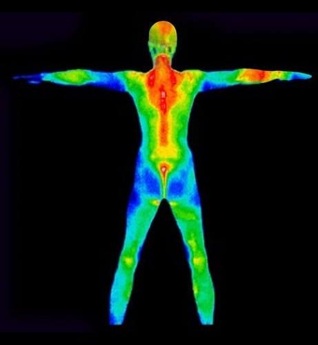 1681122-slide-body-heat-perpetua