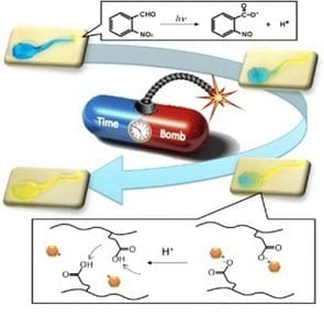 Better Medicine Delivery: Targeting drugs with hydrogels