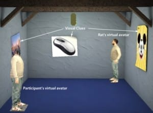 Virtual reality 'beaming' technology transforms human-animal interaction
