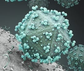Synthetic polymer could stop the spread of HIV