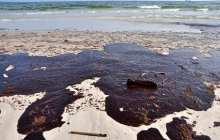 Carbon nanotube sponge shows improved water clean-up