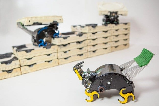 The robots can build themselves staircases to reach the next construction points, and they know how to add bricks that advance construction without blocking important paths. (Photo by Eliza Grinnell, SEAS Communications.)