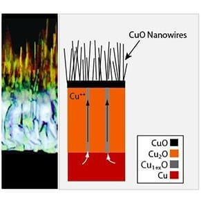 Copper nanowires could become basis for new solar cells