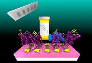 An illustration of the researchers' devices. Ribbons of graphene (silver) are mounted on circuitry (gold), which can read out a response when the attached receptor proteins (purple) bind to a target molecule.