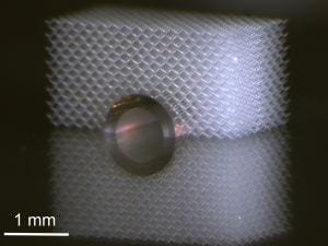 Mechanical invisibility cloak: Metamaterials protect objects on the lower side from touching. (Photo: T: Bückmann / KIT)