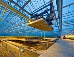 Agricultural robotics meeting the demand for future production