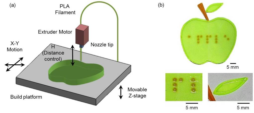 (a) a diagram showing FDM 3D printing equipment, (b) a shape of 3D tactile structure (an apple) made by the printing technology and an image of tactile patterns of an apple in the standard braille.