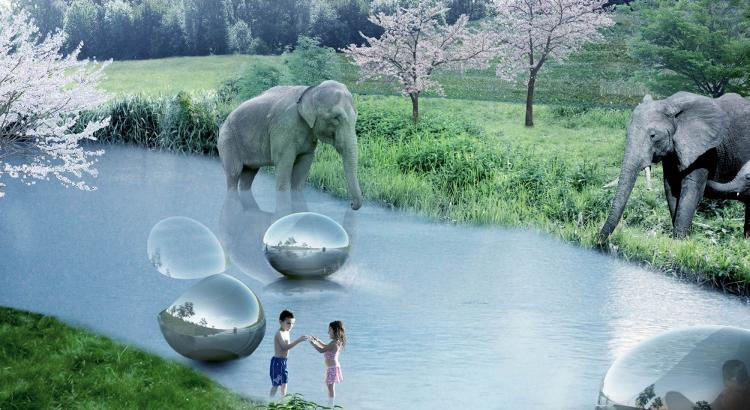 Zoos are meant for animal lovers, and yet many people who love animals don't love zoos. via FastCoExist