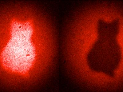 A new quantum imaging technique generates images with photons that have never touched to object -- in this case a sketch of a cat. This alludes to the famous Schrödinger cat paradox, in which a cat inside a closed box is said to be simultaneously dead and alive as long there is no information outside the box to rule out one option over the other. Similarly, the new imaging technique relies on a lack of information regarding where the photons are created and which path they take. Credit: Copyright: Patricia Enigl, IQOQI