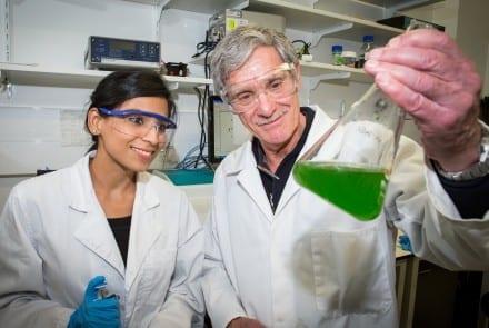 Dr Kastoori Hingorani (L) and Professor Ron Pace. Image Stuart Hay, ANU
