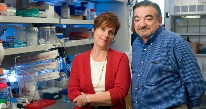 Jennifer Cochran and Amato Giaccia led a team of researchers who have developed an experimental therapy to treat metastatic cancer. (Photo: Rod Searcey)