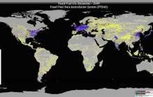 Study maps 15 years of carbon dioxide emissions on Earth