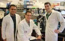 Mac researchers make breakthrough in obesity research