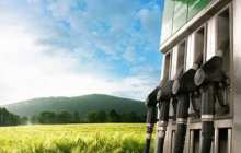 Renewable biofuel production avoids competition with food resources