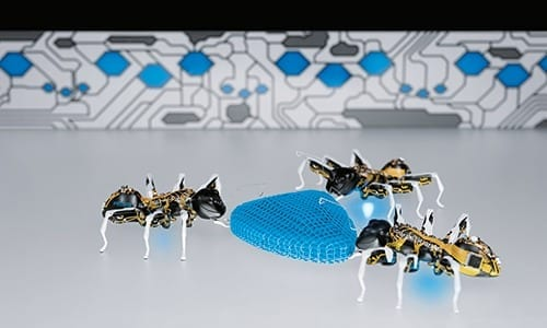 Well-conceived name: 'ANT' stands both for the natural role model and for Autonomous Networking Technologies
