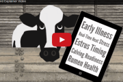 The Quantified Cow: Wearables Will Monitor Animals As Closely As Humans