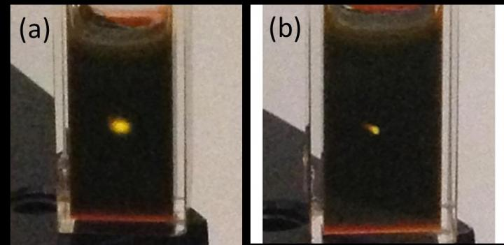 Photographs of upconversion in a cuvette containing cadmium selenide/rubrene mixture. The yellow spot is emission from the rubrene originating from (a) an unfocused continuous wave 800 nm laser with an intensity of 300 W/cm2. (b) a focused continuous wave 980 nm laser with an intensity of 2000 W/cm2. The photographs, taken with an iPhone 5, were not modified in any way. CREDIT Zhiyuan Huang, UC Riverside.