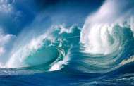 The oceans can't take any more: researchers fear a fundamental change in the oceans