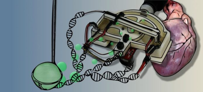 This is an artistic rendition of the DOTS qPCR device. CREDIT Dustin Harshman