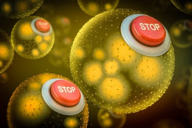 "To prevent genetically modified bacteria from escaping into the wider environment, researchers have developed safeguards in the form of two so-called ""kill switches,"" which they call ""Deadman"" and ""Passcode."" These kill switches can cause synthetic bacteria to die without the presence of certain chemicals. Image: MIT News"