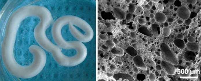 via www.sciencealert.com