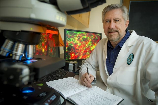 Lead investigator James Zadina, VA senior research career scientist and professor of medicine, pharmacology and neuroscience at Tulane University School of Medicine (Photo by Paula Burch Celentano).