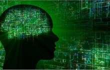 Bridging the Bio-Electronic Divide