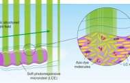 Microrobots learn from ciliates - could become micro-submarines to help detect and cure disease?