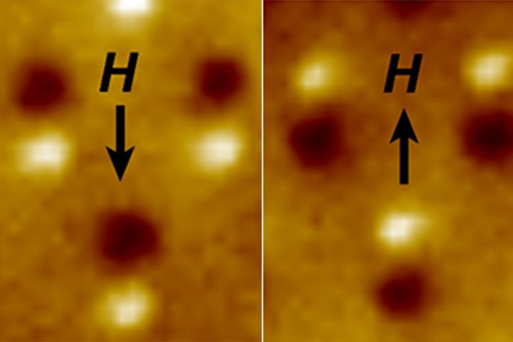"Magnetic microscope image of three nanomagnetic computer bits. Each bit is a tiny bar magnet only 90 nanometers long. The microscope shows a bright spot at the ""North"" end and a dark spot at the ""South"" end of the magnet. The ""H"" arrow shows the direction of magnetic field applied to switch the direction of the magnets. CREDIT Image by Jeongmin Hong and Jeffrey Bokor"