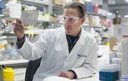 Researchers uncover 'local heroes' of immune system