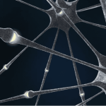 "Physicists build ""electronic synapses"" for neural networks"