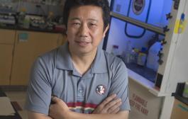 Research team makes Zika drug breakthrough
