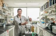 Bioelectrodes feeding on waste can generate electricity up to industrial levels