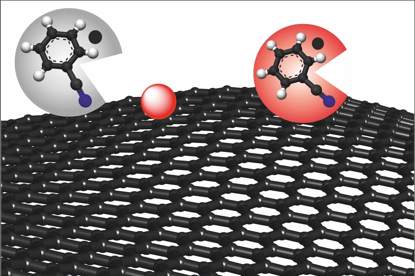 Chemical production of graphene, a single layer of carbon atoms. The solution benzonitrile (grey circle) removes the causes of possible defects and turns red, resulting in defect-free graphene (red circle). (Image: FAU/Philipp Vecera)