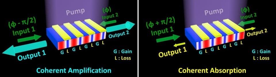Schematics above show light input (green) entering opposite ends of a single device. When the phase of light input 1 is faster than that of input 2 (left panel), the gain medium dominates, resulting in coherent amplification of the light, or a lasing mode. When the phase of light input 1 is slower than input 2 (right panel), the loss medium dominates, leading to coherent absorption of the input light beams, or an anti-lasing mode. (Credit: Zi Jing Wong/UC Berkeley)